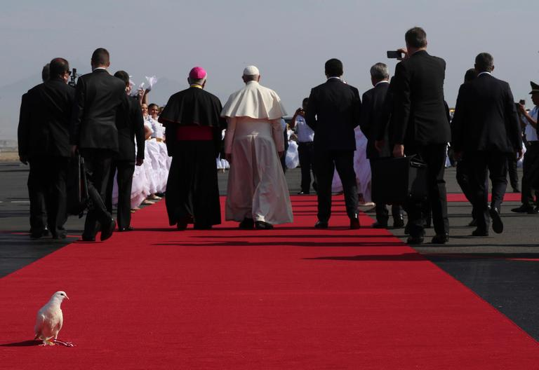 "A dove that was released on the arrival of Pope Francis roosts on a section of a red carpet at the airport in Trujillo, Peru, Saturday, Jan. 20, 2018. Francis travelled to an area of northern Peru that is frequently hit by ""El Nino"" storms and was inundated in 2017 by flooding that killed more than 150 people and destroyed hundreds of thousands of homes. (AP Photo/Alessandra Tarantino)"