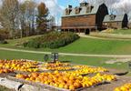 Your Ultimate Autumnal Experience Awaits at Liberty Ridge Farm
