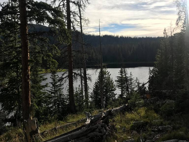 Search and Rescue teams spent Thursday afternoon combing through the remote wilderness of Summit County after a camper was reported missing. (Photo: Jeremy Harris / KUTV)<p></p>