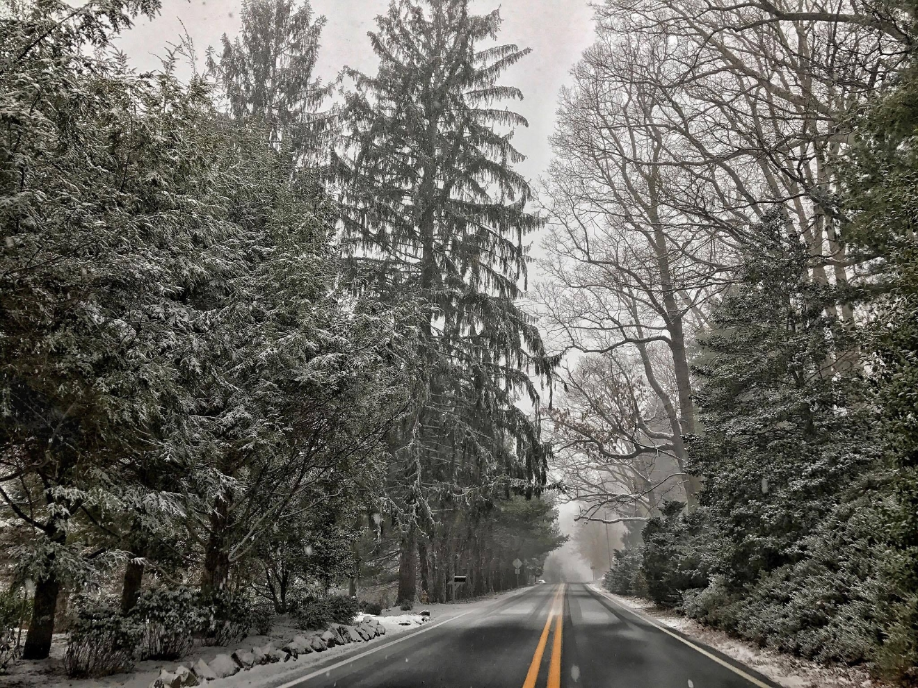 This is a photo of Town Mountain Road! (Photo credit: Tyler Smith)