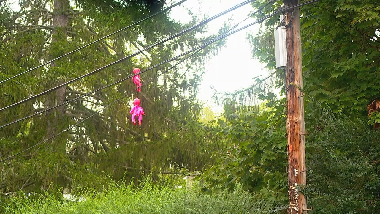 Two pink dolls are hanging from power lines on Virginia Avenue off Haywood Road. Several more were hanging earlier in the week, but a city crew pulled them down. (Photo credit: WLOS staff)<p></p>