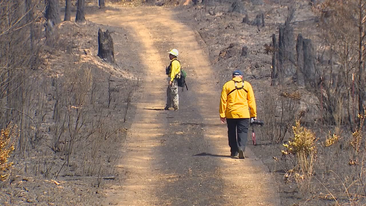 Burn marks left behind after fires scorch parts of Mason County (KOMO Photo)