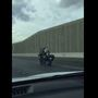 VIRAL VIDEO: Dog riding on back of motorcycle down Las Vegas freeway