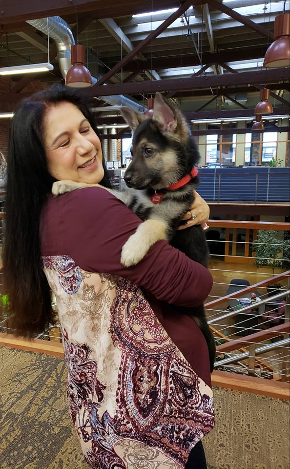 'You get to be a puppy forever': Whatcom Co. rescue creates bucket list for dying puppy (Photos courtesy of Rescued Hearts Northwest)