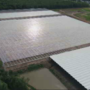 Tomato growing facility taking shape in Town of Ontario
