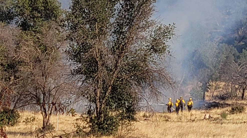 Vegetation fire on Sacramento River Trail on Friday deemed intentional, says RFD