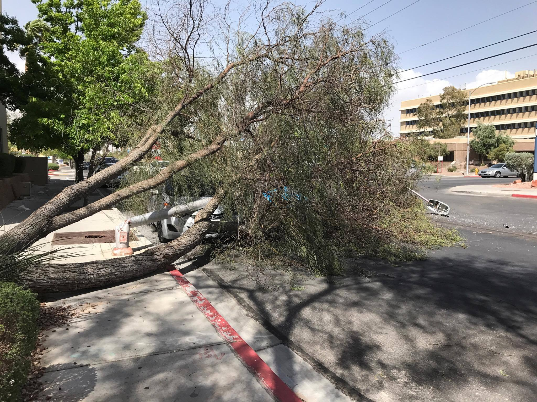 Outside UMC near Charleston and Rancho (Stephanie Murray)