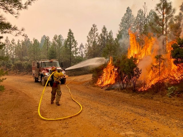 Oregon firefighter working on the fire line of the Camp Fire - Oregon State Fire Marshal photo.jpeg