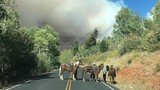 As crews fight Utah wildfire, evacuations may last weeks