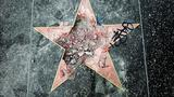 Man sentenced to probation, counseling for smashing Trump's Hollywood star with ax