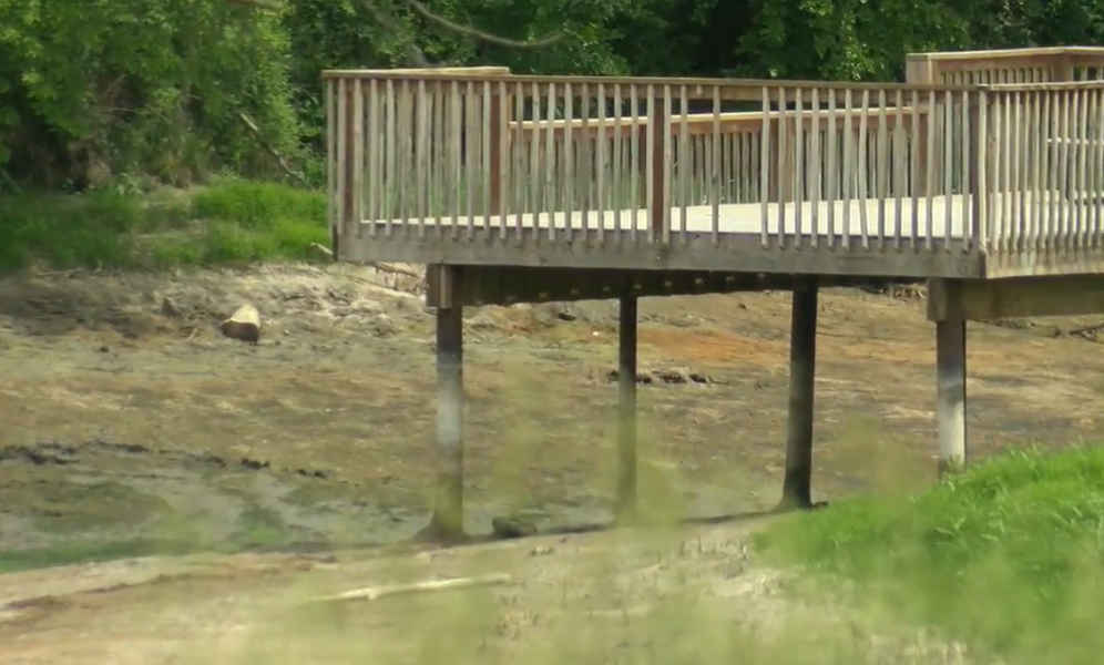Project aims to improve water and habitat at Crystal Lake (NTV News)