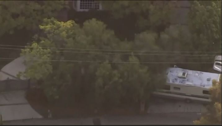 Woman with 2 dogs in stolen RV leads police on wild chase in California. (CBS)