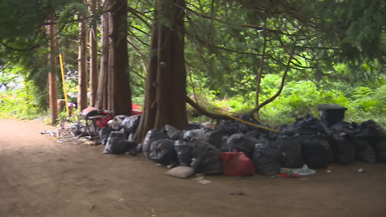 The city of Olympia claims its homeless problem is now a public health emergency. Plans to evict a homeless encampment along{ }Wheeler Avenue SE have been put on hold for the next week. (Photo: KOMO News)