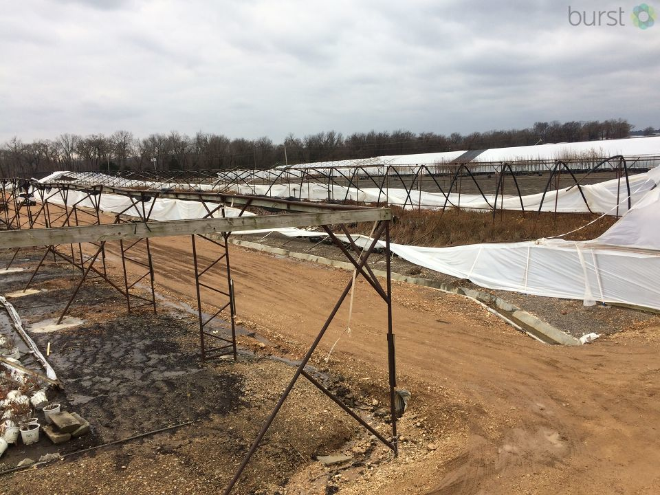 Green Leaf Nursery in Fort Gibson, Okla. (KTUL)