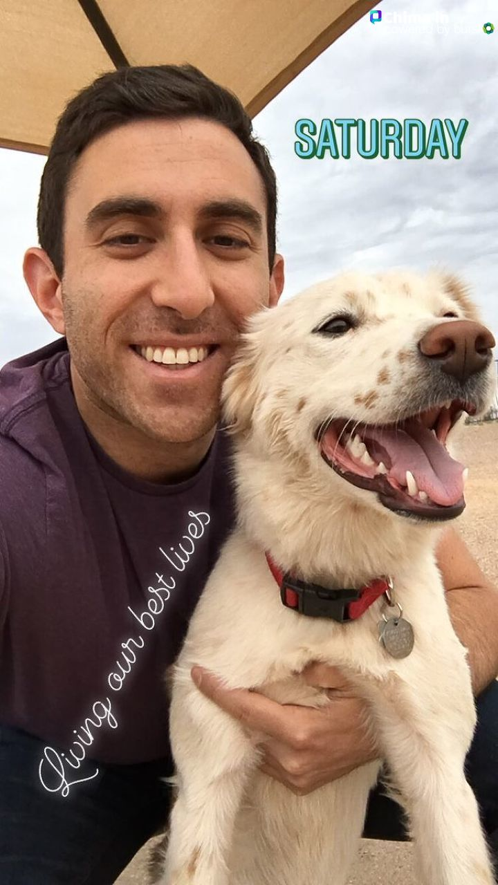 'KATU News Live Desk reporter Evan Schreiber and his dog, Penny!'.jpg