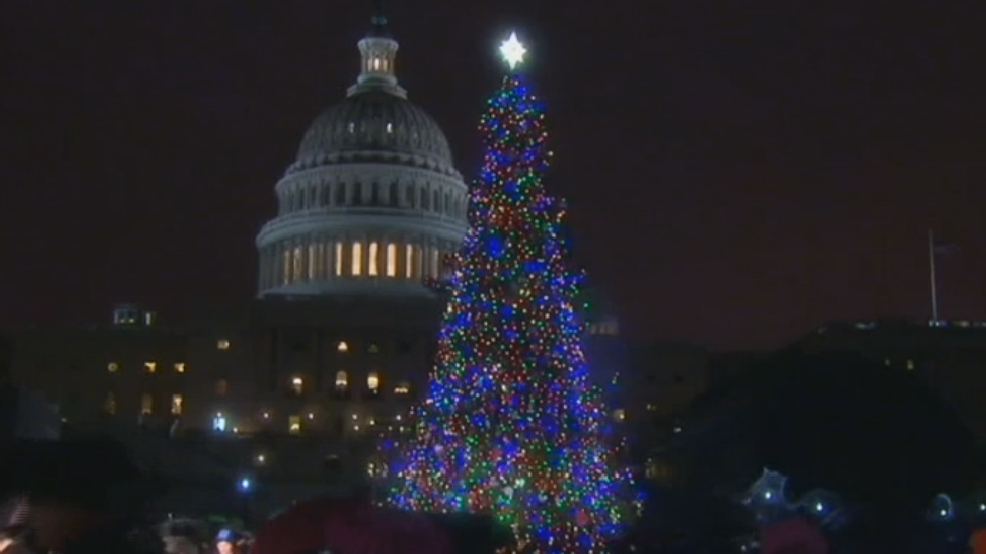 idaho in dc watch the us capitol christmas tree light up