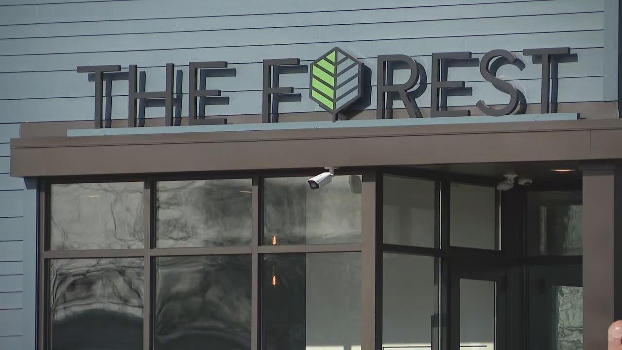 The Forest dispensary in Sandusky, Ohio Jan. 15, 2019. (WSYX/WTTE)