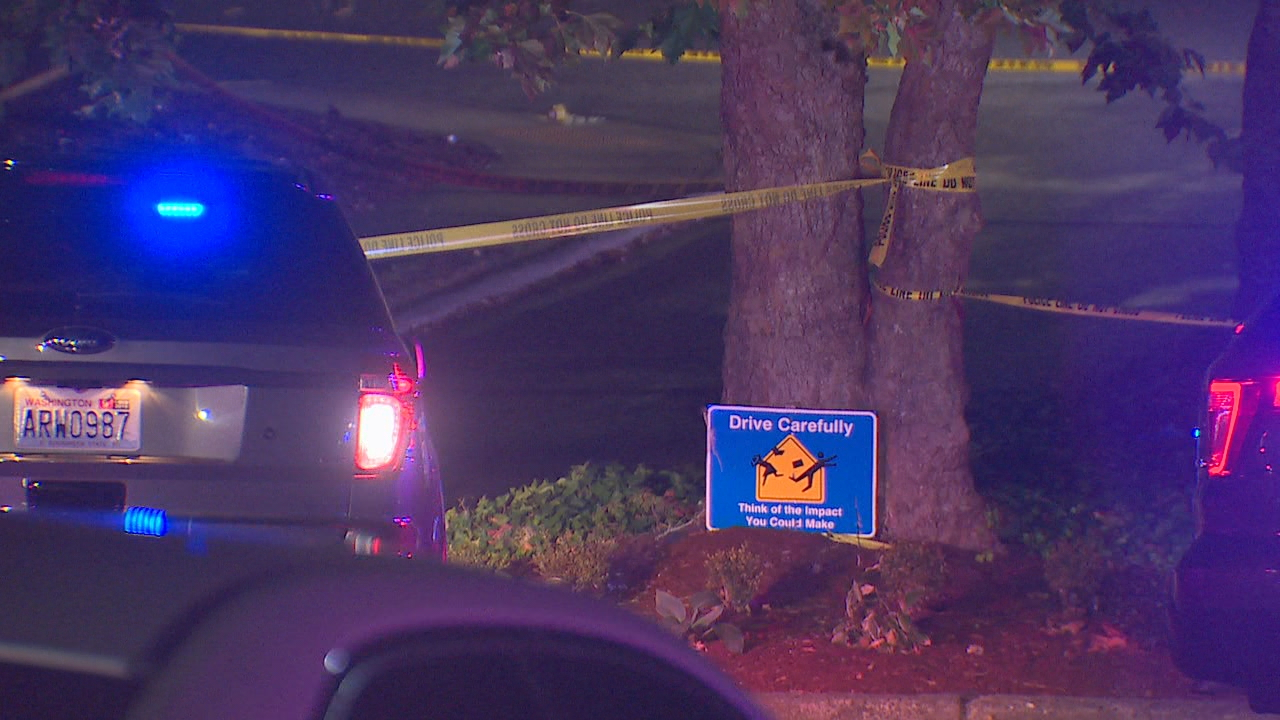 Police investigate the first Lynnwood shooting near Lynndale Park. (KOMO News photo)
