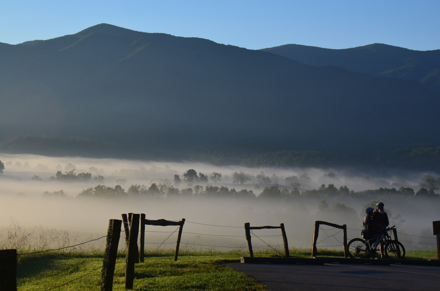Pictured: Bicycles on Cades Cove Loop Road (Photo provided by Great Smoky Mountains National Park)