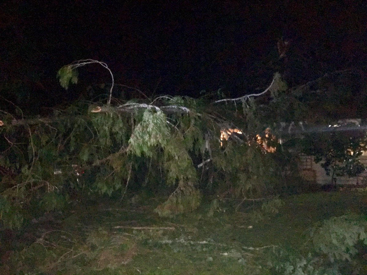 Snohomish County storm causes tree to fall into home (KOMO News Photo)