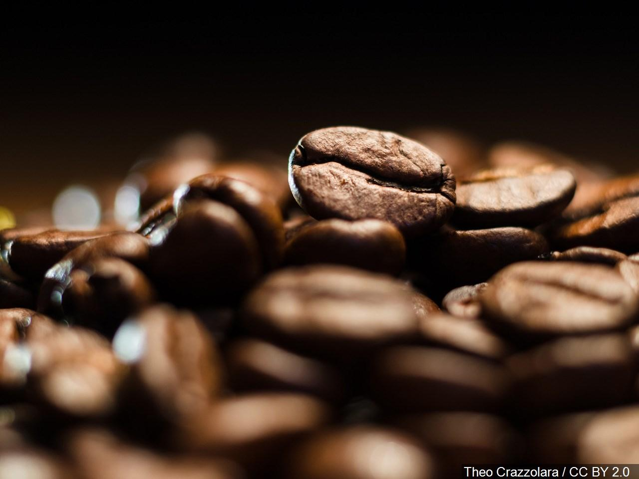 'High extinction risk' for 60% of world's coffee species, study claims. (Photo: Theo Crazzolara via MGN)